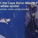 Blue Bay Whale Watching Byron Bay - Whale Spotter